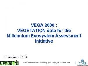 VEGA 2000 VEGETATION data for the Millennium Ecosystem