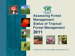 Assessing Forest Management Status of Tropical Forest Management
