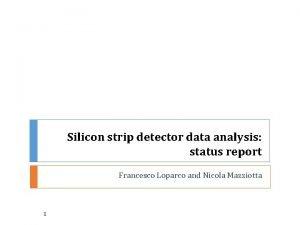 Silicon strip detector data analysis status report Francesco