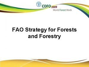 FAO Strategy for Forests and Forestry FAO STRATEGY