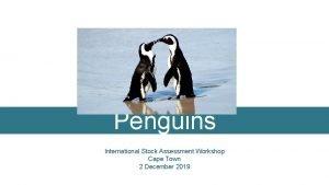 Penguins International Stock Assessment Workshop Cape Town 2