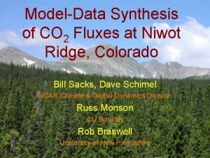 ModelData Synthesis of CO 2 Fluxes at Niwot
