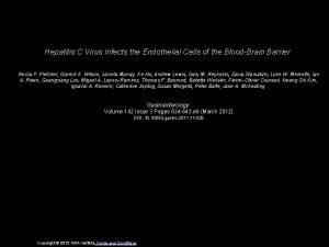 Hepatitis C Virus Infects the Endothelial Cells of