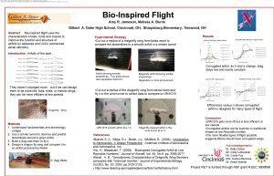 Hu H Masatoshi T 2008 Bioinspired Corrugated Airfoil