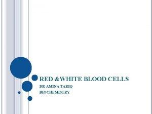 RED WHITE BLOOD CELLS DR AMINA TARIQ BIOCHEMISTRY