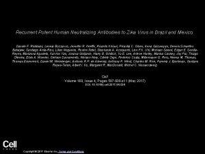Recurrent Potent Human Neutralizing Antibodies to Zika Virus