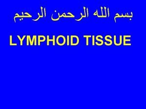 CELLS OF IMMUNE SYSTEM 1 Lymphocytes B cells