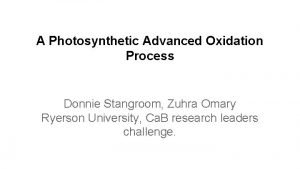 A Photosynthetic Advanced Oxidation Process Donnie Stangroom Zuhra