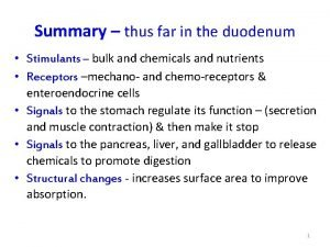 Summary thus far in the duodenum Stimulants bulk
