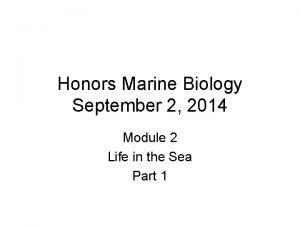 Honors Marine Biology September 2 2014 Module 2