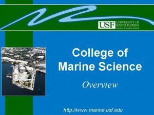 College of Marine Science Overview http www marine