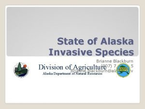 State of Alaska Invasive Species Brianne Blackburn 907
