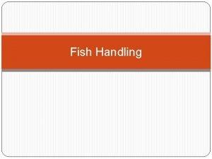 Fish Handling Prinsip dasar Fish handling 1 2