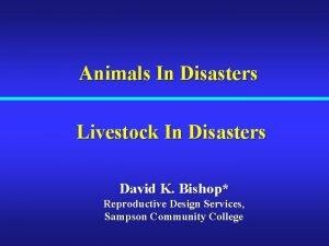 Animals In Disasters Livestock In Disasters David K