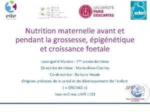 Nutrition maternelle avant et pendant la grossesse pigntique