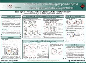Cardiac Bioelectricity and Arrhythmia Center CBAC Jordi Heijman