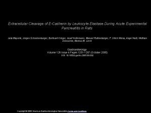 Extracellular Cleavage of ECadherin by Leukocyte Elastase During