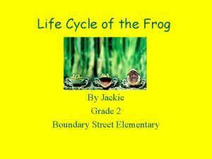 Life Cycle of the Frog By Jackie Grade