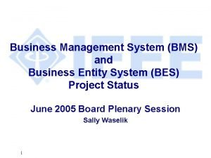 Business Management System BMS and Business Entity System