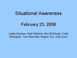 Situational Awareness February 23 2006 Leslie Sokolow Noel