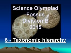 Science Olympiad Fossils Division B 2015 6 Taxonomic