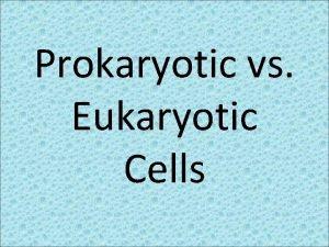 Prokaryotic vs Eukaryotic Cells All Cells Contain Cell