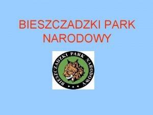 BIESZCZADZKI PARK NARODOWY HISTORIA Bieszczadzki Park Narodowy jest