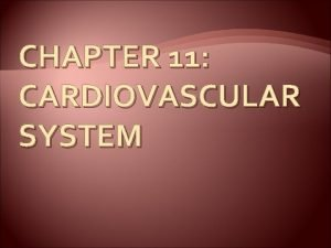 CHAPTER 11 CARDIOVASCULAR SYSTEM The Cardiovascular System A