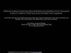 Molecular Analysis of Hybrid NeurofibromaSchwannoma Identifies Common Monosomy