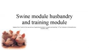 Swine module husbandry and training module Adapted from