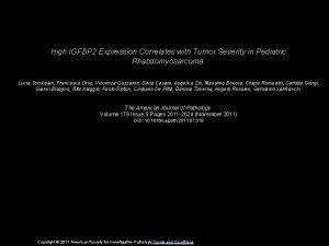 High IGFBP 2 Expression Correlates with Tumor Severity