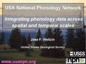 USA National Phenology Network Integrating phenology data across