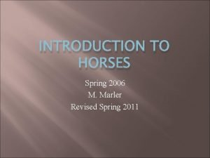 INTRODUCTION TO HORSES Spring 2006 M Marler Revised