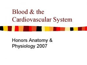 Blood the Cardiovascular System Honors Anatomy Physiology 2007