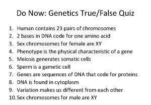 Do Now Genetics TrueFalse Quiz 1 Human contains