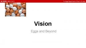 Vision Eggs and Beyond Eggs as a Commodity