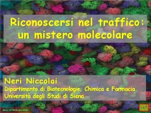 Riconoscersi un mistero nel traffico molecolare Neri Niccolai