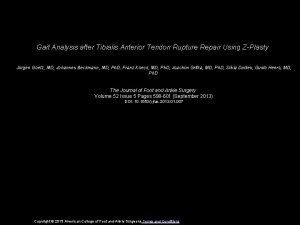 Gait Analysis after Tibialis Anterior Tendon Rupture Repair