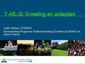 TAf LQ 0 meting en actieplan Judith Gulikers