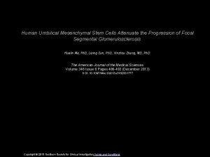 Human Umbilical Mesenchymal Stem Cells Attenuate the Progression