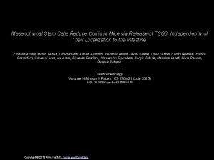 Mesenchymal Stem Cells Reduce Colitis in Mice via