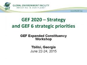 GEF 2020 Strategy and GEF 6 strategic priorities