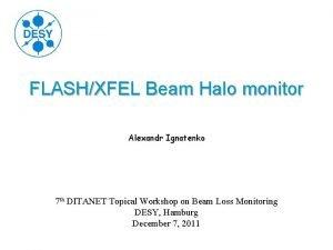 FLASHXFEL Beam Halo monitor Alexandr Ignatenko 7 th