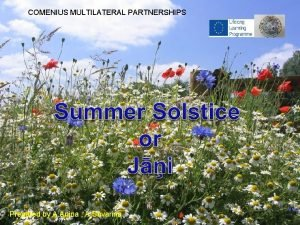 COMENIUS MULTILATERAL PARTNERSHIPS Prepared by A Anina A