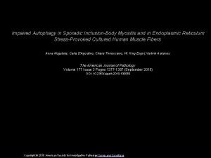 Impaired Autophagy in Sporadic InclusionBody Myositis and in