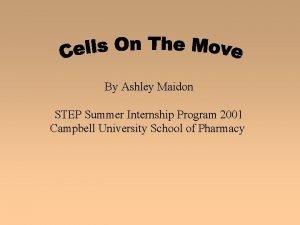 By Ashley Maidon STEP Summer Internship Program 2001