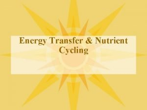 Energy Transfer Nutrient Cycling How is energy transferred