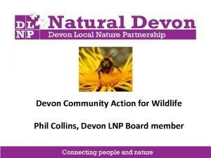 Devon Community Action for Wildlife Phil Collins Devon