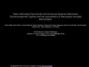 Statin Attenuates Experimental AntiGlomerular Basement Membrane Glomerulonephritis Together