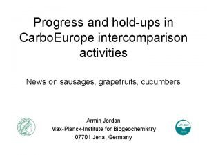 Progress and holdups in Carbo Europe intercomparison activities